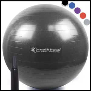 SmarterLife Products Exercise Ball