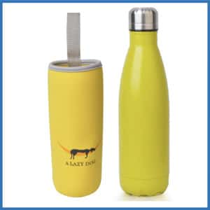 A Lazy Dog Vacuum Insulated Water Bottle