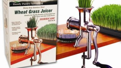 Handy Pantry HJ Hurricane Manual Wheatgrass Juicer, Stainless Steel